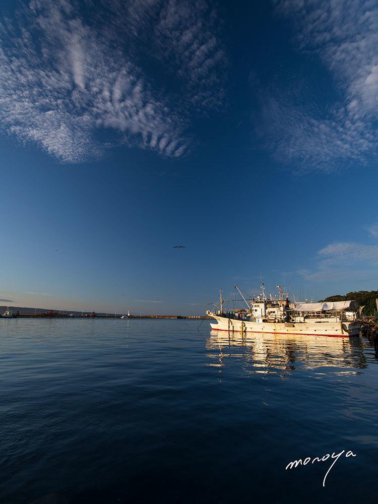 漁港の朝_c0085877_06005215.jpg
