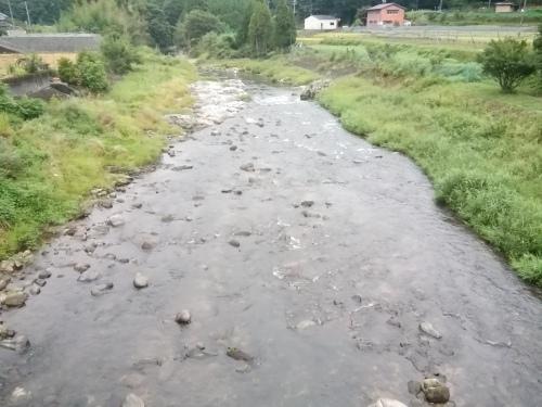 2020/9/5    水位観測  (槻の木橋より)_b0111189_05471728.jpg