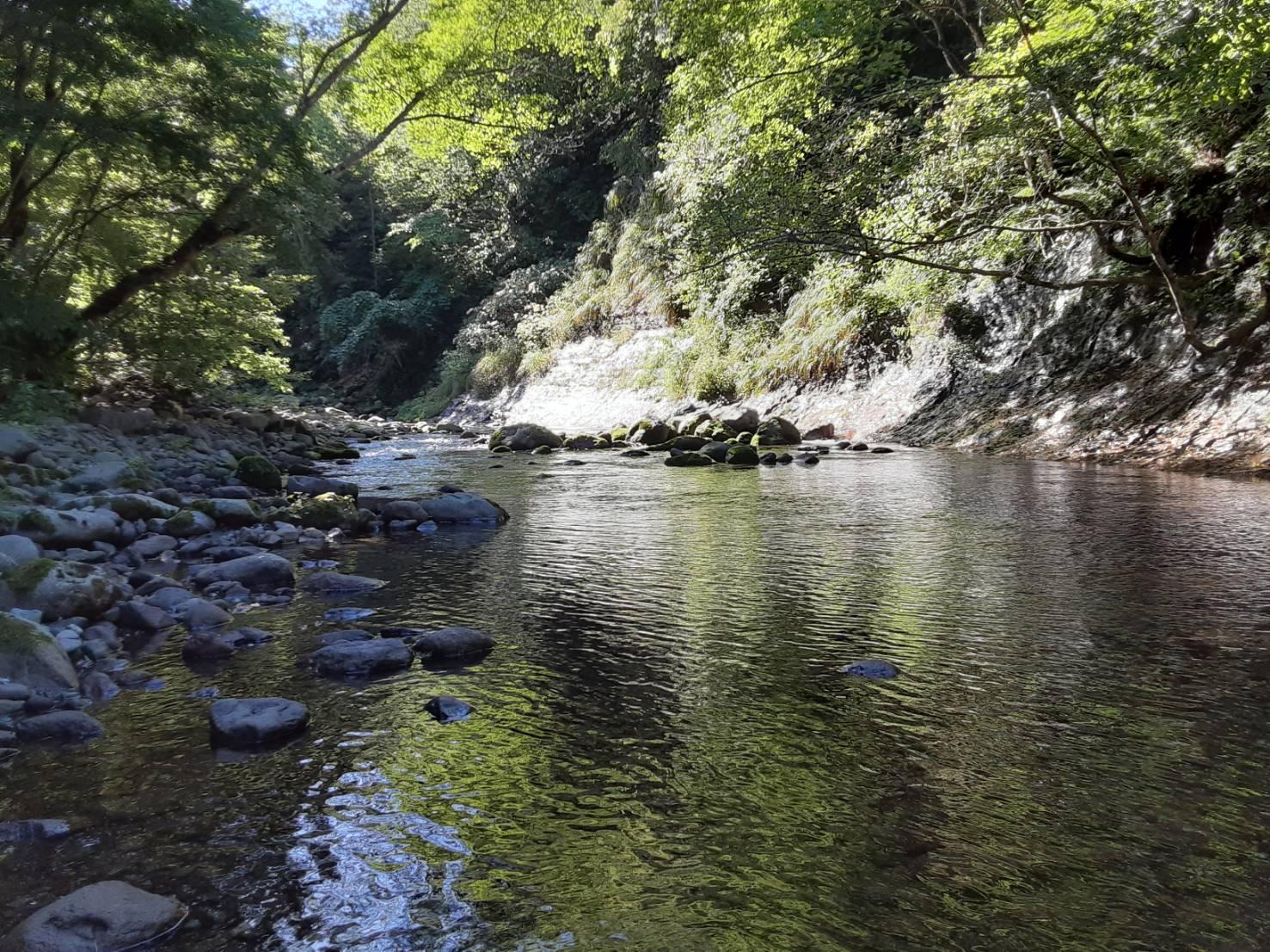 夏の終わりに余別川で沢登り_d0198793_00513412.jpg