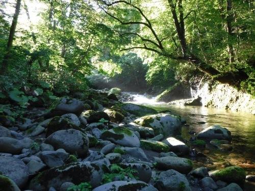 夏の終わりに余別川で沢登り_d0198793_00543328.jpg