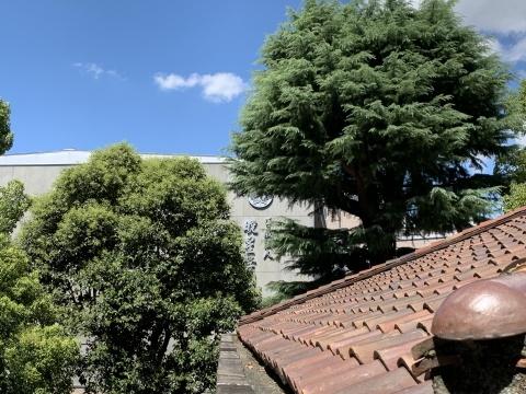 「九段ハウス」(旧山口萬吉邸)見学ツアー_d0001599_14523461.jpeg