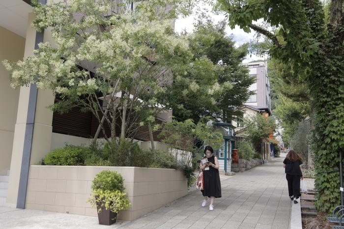 EOS R6 KOBE SNAP 北野坂_b0043304_21083011.jpg