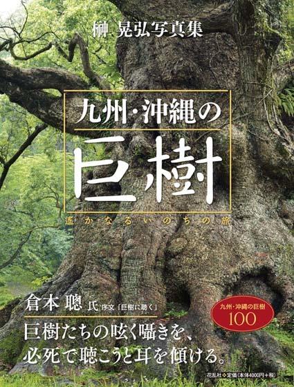 ■「巨樹にカメラを向ける時、ドキドキしませんでしたか?」──榊晃写真集『九州・沖縄の巨樹』に寄せられた声_d0190217_22434456.jpg