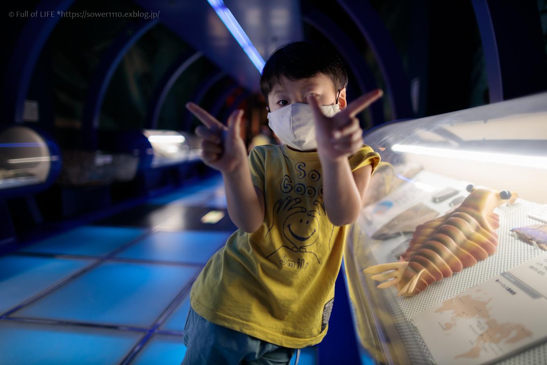 夏の終わりに博物館へ「ミュージアムパーク茨城県自然博物館」_c0369219_12281955.jpg