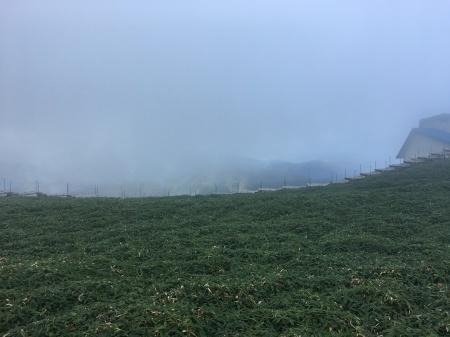 9月5日(土)晴 登山道ではにわか雨_c0089831_06192520.jpeg