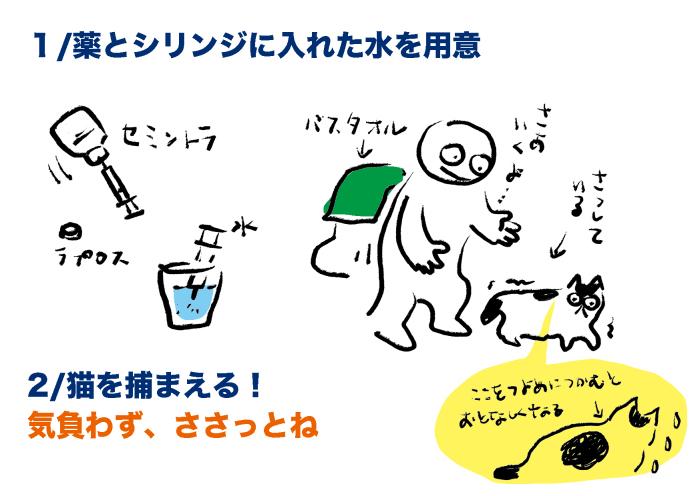プチコのこと_2 #猫 慢性腎臓病 #投薬方法_e0026053_14074316.jpg