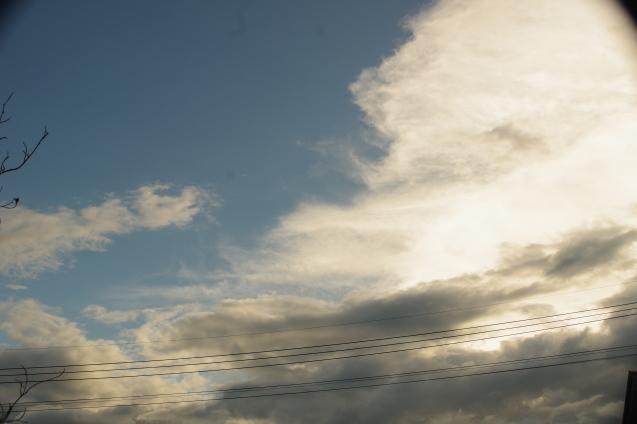 9月5日 早朝夕暮れ時のウオーキング撮影_d0034980_18564160.jpg
