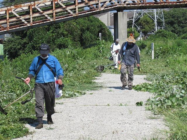 写真をアップし改めて 「とにかくバテた! 蒸し暑い中、滝川でヒガンバナの開花の前の草刈り清掃」_f0141310_20581779.jpg