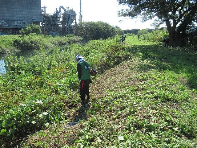 写真をアップし改めて 「とにかくバテた! 蒸し暑い中、滝川でヒガンバナの開花の前の草刈り清掃」_f0141310_20584073.jpg