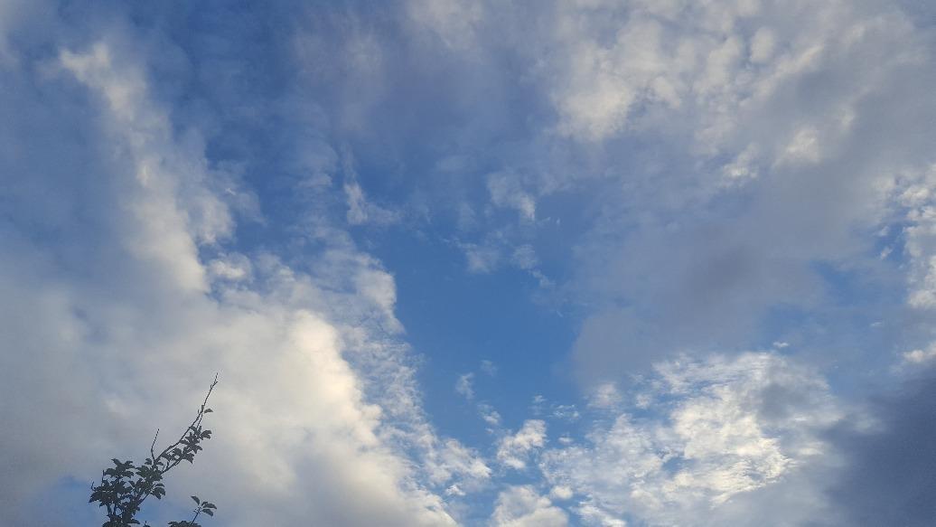 空が近かった---_f0126121_12163609.jpg