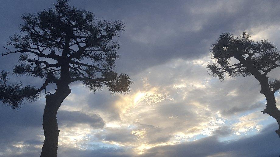 空が近かった---_f0126121_12163629.jpg