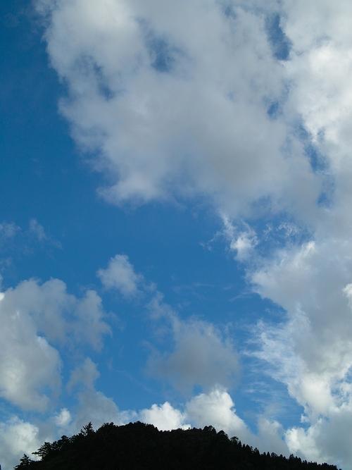 台風10号・・・キリギリスとエキサイトブログ_d0005250_17245039.jpg