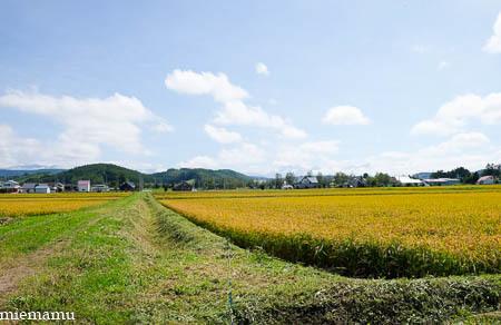 田んぼと山並み~9月の東川_d0340565_19470621.jpg