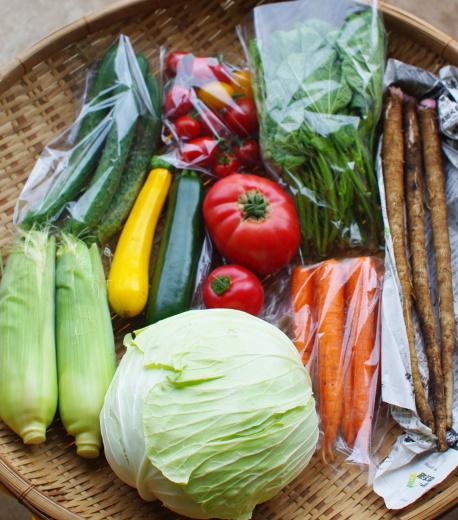 今週の野菜セット(9/8~9/12着)_c0110869_12453508.jpg