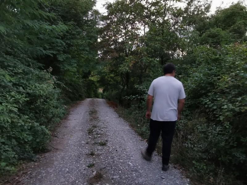 夕方の散歩_f0106597_16051244.jpg