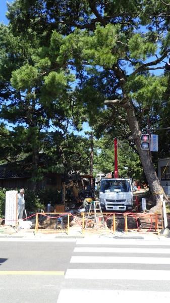 玉津島神社 鳥居復元工事_c0367107_12252011.jpg