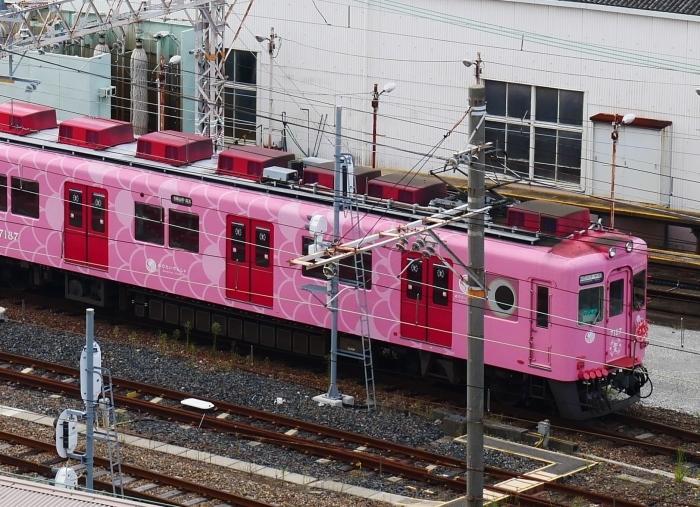 オープン3か月後のキーノ和歌山 4  2020-09-16 00:00_b0093754_22565755.jpg