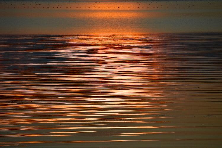 サロマ湖夕景③_f0116528_20215990.jpg