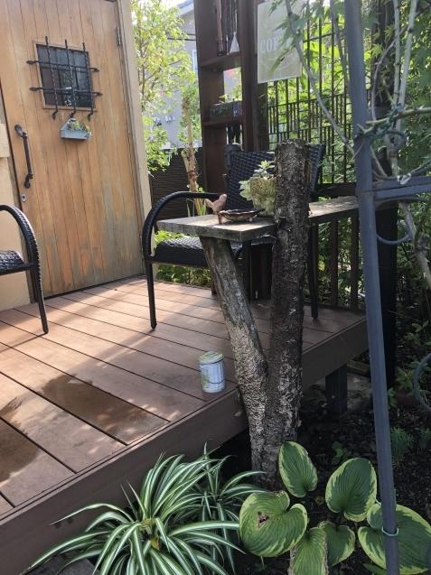 ガーデンハウスから見た「パンパスグラス」_a0243064_11594701.jpg