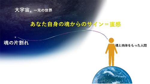 電磁波の影響を抜くことが今月のミッション!@直感Labo._d0169072_10340786.jpg