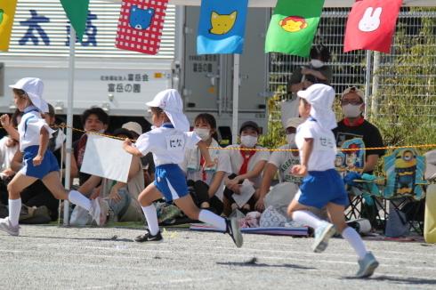 9/9 富岳保育園運動会―2_e0185893_07324443.jpg