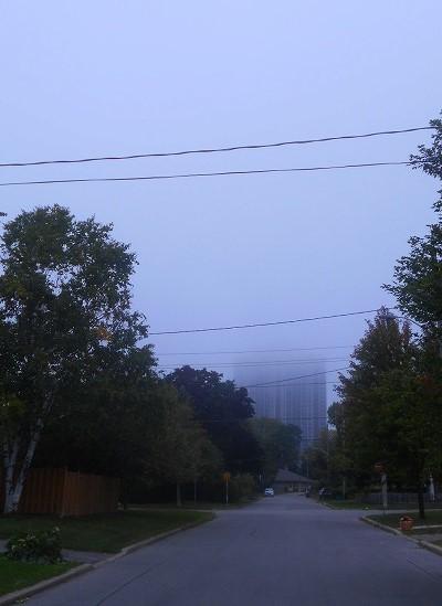 霧の朝_d0000995_12135749.jpg