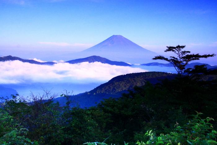 令和2年8月の富士(21) 大観山から遠望富士 _e0344396_21262824.jpg