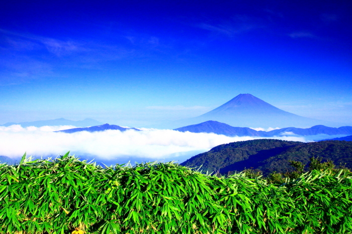 令和2年8月の富士(21) 大観山から遠望富士 _e0344396_21262831.jpg