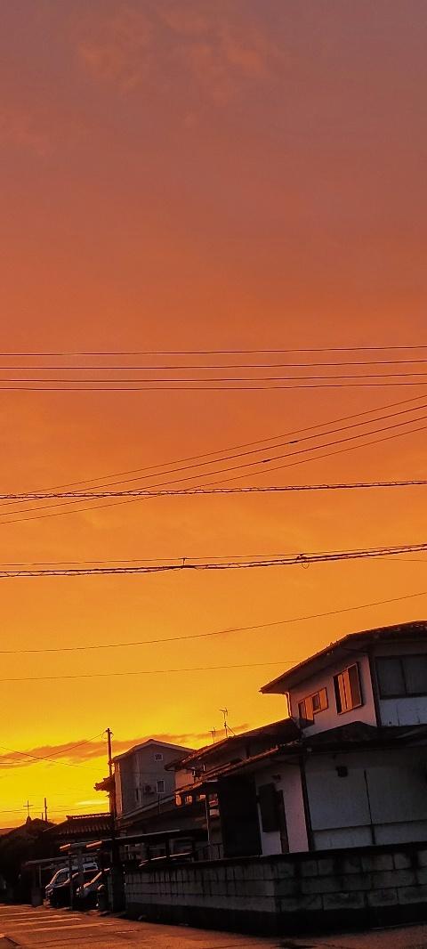 20200910 【今日の天気】真っ赤に燃えて_b0013099_12424674.jpg