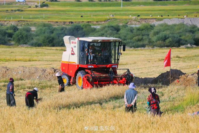 喜び溢れる収穫祭…🎵_c0162404_11124496.jpg