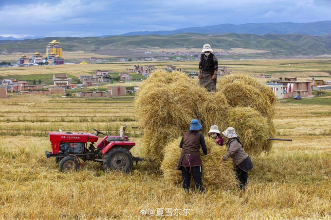 喜び溢れる収穫祭…🎵_c0162404_11125075.jpg