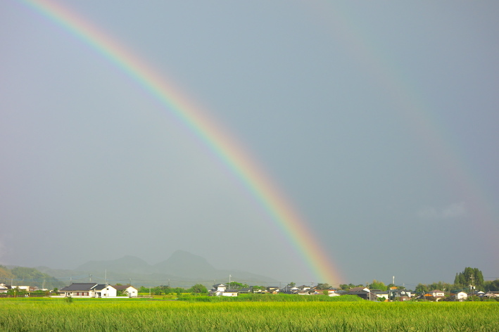 虹が出たよ♪ふたたび_e0271409_21585268.jpg