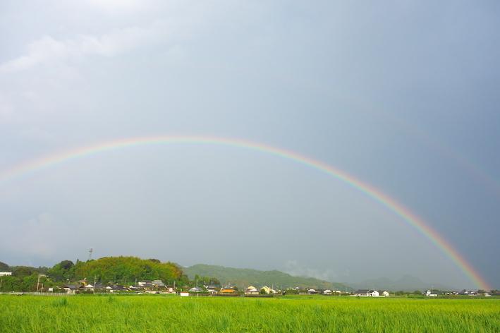 虹が出たよ♪ふたたび_e0271409_21590016.jpg