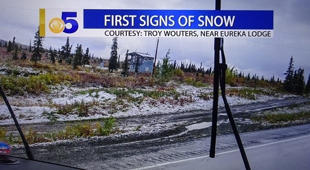 S スグリの収穫 雪のニュース_d0356844_05582451.jpg