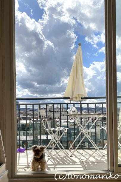 アパートからのパリの空。おまけに給食メニュー_c0024345_18503916.jpg