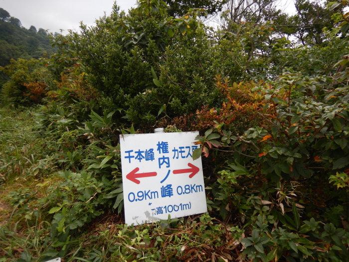 飯豊連峰縦走 ~ 2020年8月29日~31日_f0170180_06015745.jpg