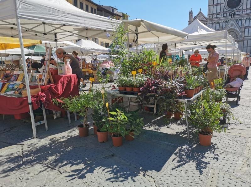 フィレンツェのオーガニック市フィエルーコラ~今回のテーマは「パン」_f0106597_04141052.jpg
