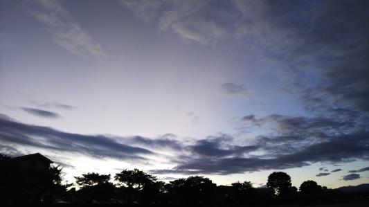 空、虹、猫、やきもの_a0284408_22122417.jpg