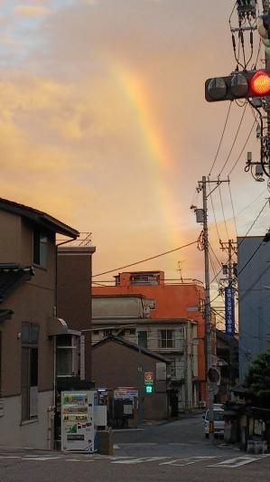 空、虹、猫、やきもの_a0284408_22131163.jpg