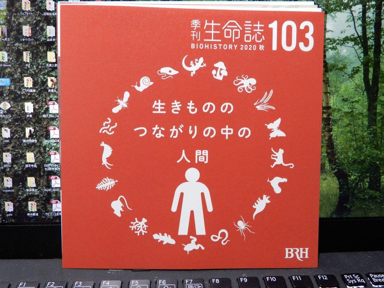 季刊「生命誌」103号_c0025115_21034695.jpg