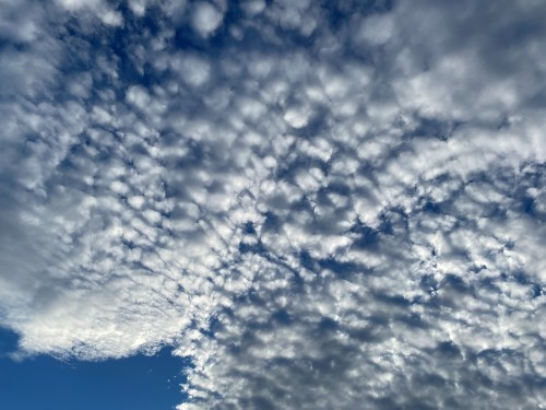 羊のような雲_a0120920_17222666.jpg