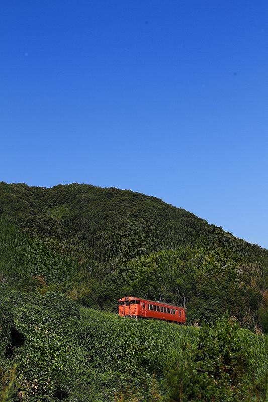 2020年8月 津山線はキハ天国_f0233120_1034686.jpg