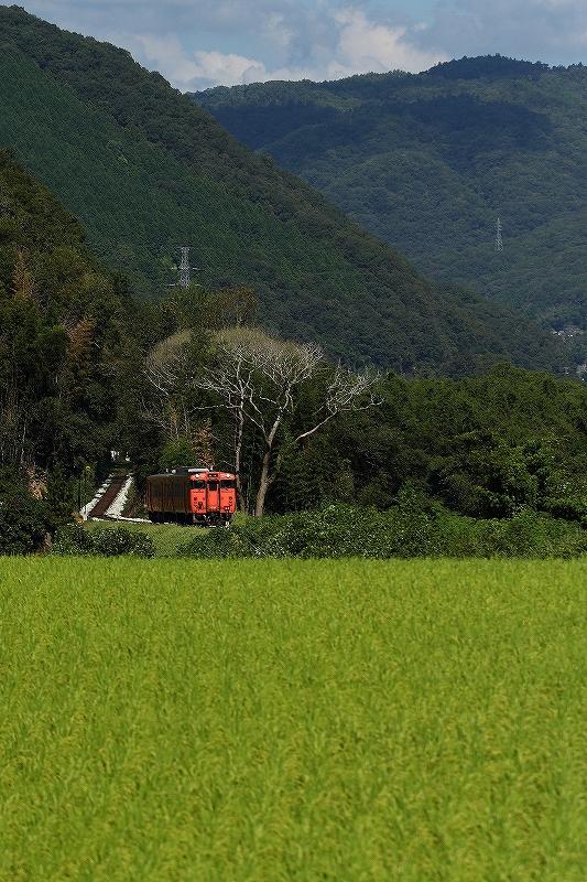 2020年8月 津山線はキハ天国_f0233120_10395788.jpg