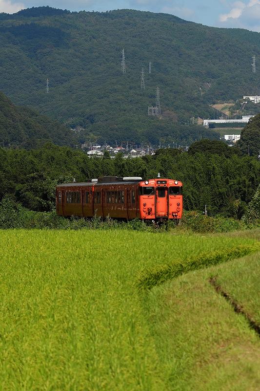 2020年8月 津山線はキハ天国_f0233120_10402799.jpg