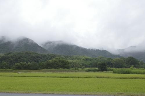 雨降りお散歩_a0345833_22300286.jpg