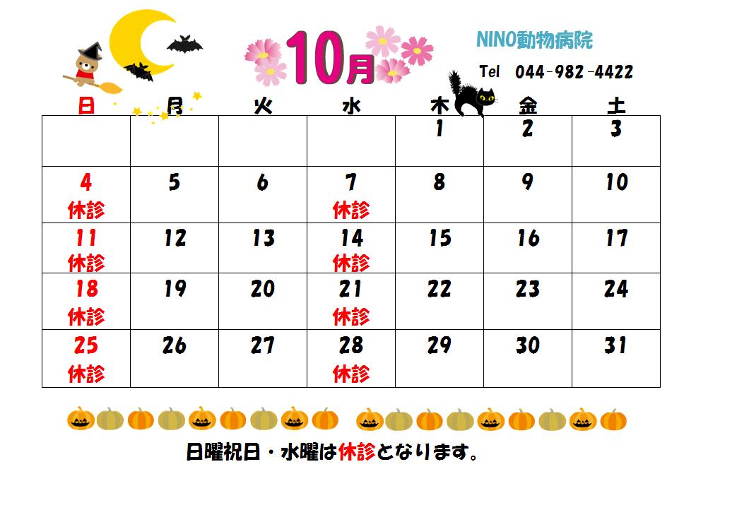 10月の診療日のお知らせ☆_e0288670_11141526.png