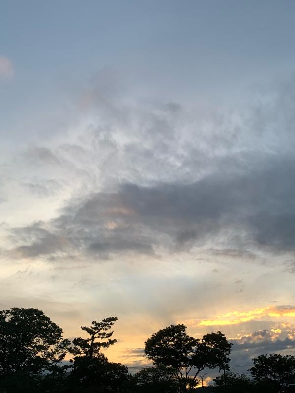 賀茂川の風景_b0408892_08414999.jpg