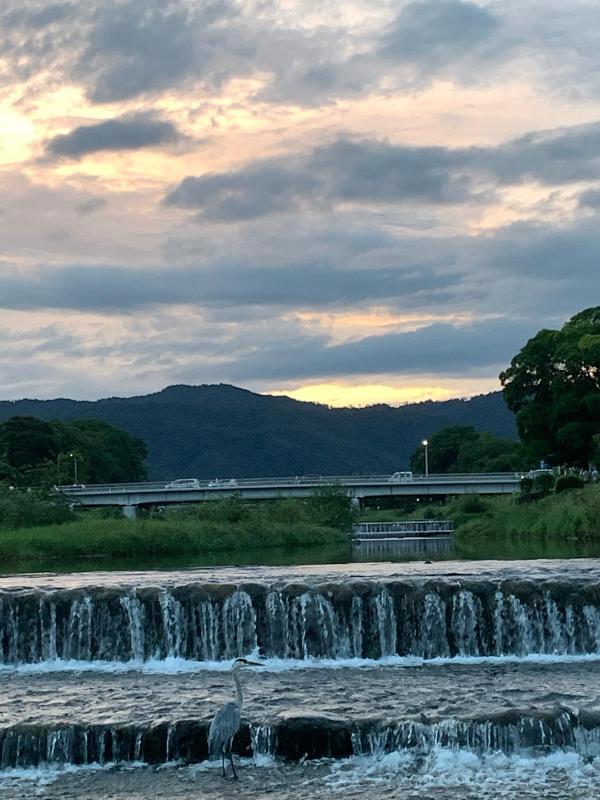賀茂川の風景_b0408892_08415381.jpg