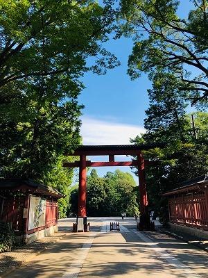武蔵一宮 氷川神社と氷川だんご(^^)_e0152329_17202096.jpg