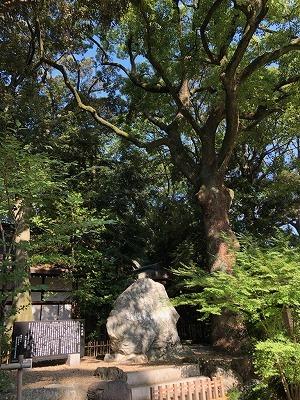 武蔵一宮 氷川神社と氷川だんご(^^)_e0152329_17211777.jpg